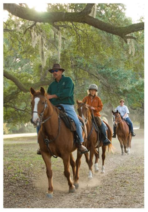 Mullet Hall Equestrian Center   Charleston County Parks