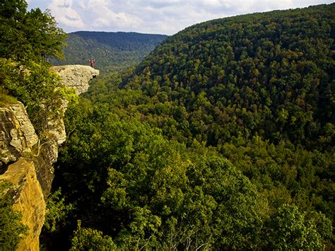 Ozark National Forest, an Arkansas National Forest located