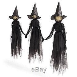 Black Witches Halloween Yard Witch Lighted Decoration