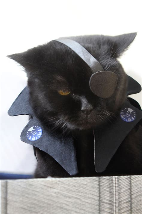 Kitty Cosplay of the Day: The Avengers' Nick Fury   The